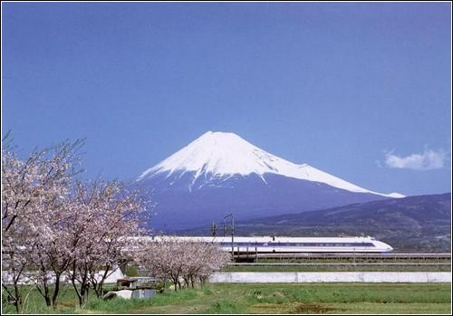 Типичный японский пейзаж: гора Фудзи, сакура в цвету и синкансэн.