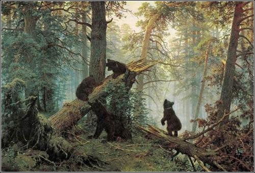 Обзор необычных медведей.