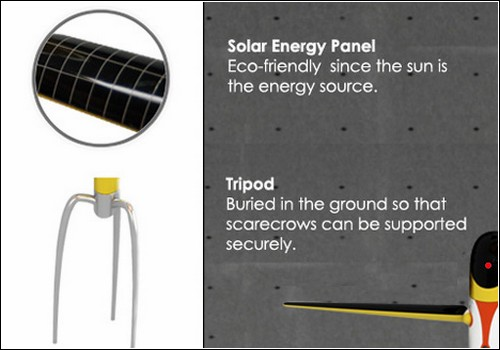 Солнечные батареи – источник чистой возобновляемой энергии.