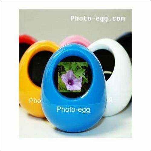 Цифровая фоторамка Photo Egg.