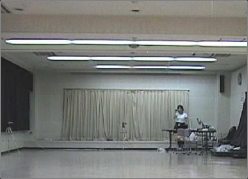 Кадр из видеозаписи управляемого полета. Жук где-то там.