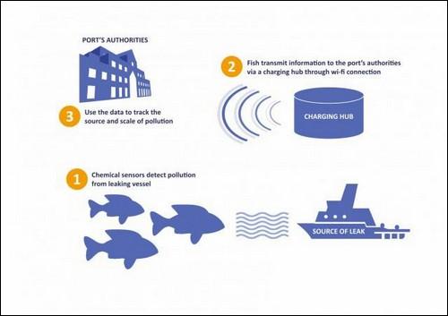 Схема работы рыбы-робота.