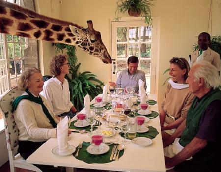 Жирафское поместье