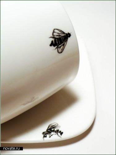 Вся посуда в насекомых!