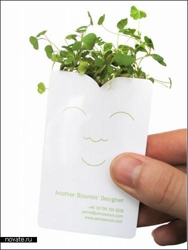 Green-карточка