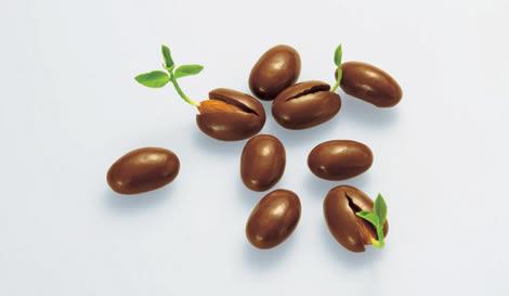 Шоколадная фасоль... Вернее, какао-бобы из чистого шоколада