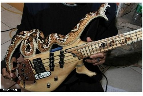Обзор самых диковинных дизайнерских гитар