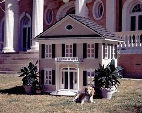 Дом для собачки царских кровей