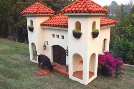 Настоящий собачий замок