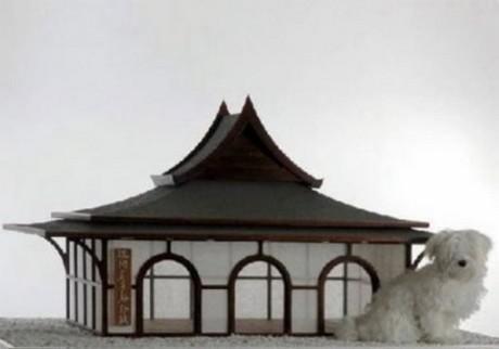 Четвероногие тоже любят жилища в японском стиле
