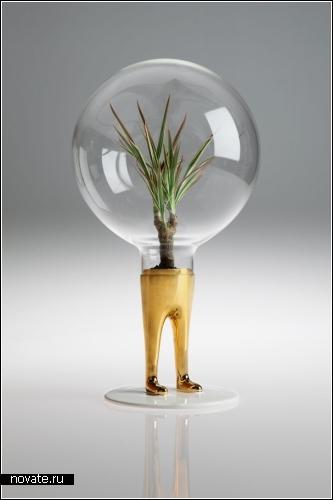 Domsai - растение-тамагочи. Проект дизайнера Matteo Cibic