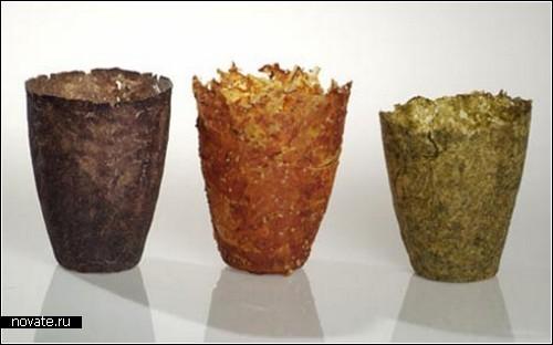 Чашки и тарелки из овощей. Коллекция съедобной посуды от Гека Воутерса (Geke Wouters)