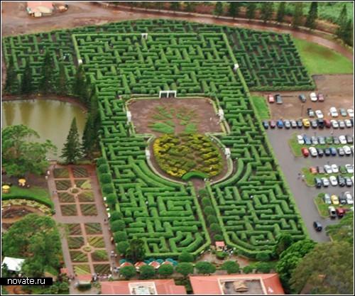 Растительные лабиринты, *построенные* руками людей