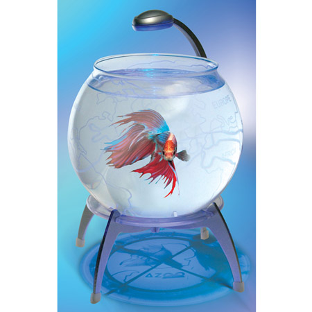 Она самая, гламурная рыбка
