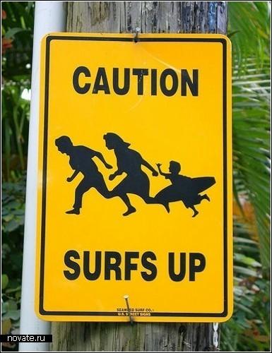 Берегись бегущих серфингистов
