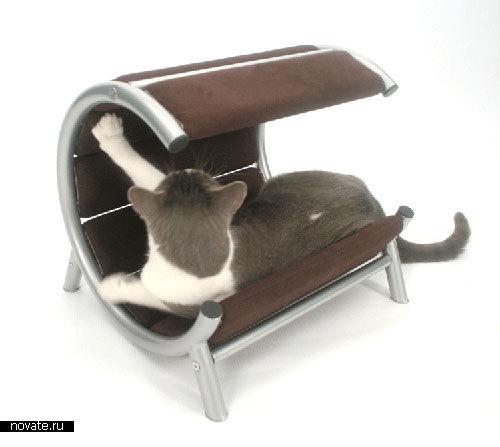 Диван и двухэтажная кровать для кошек