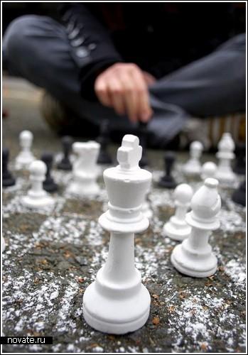 Шахматы-мелки