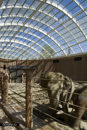 «Домик для слона» от Foster + partners