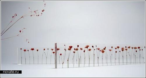 Линейка, где деления - цветы