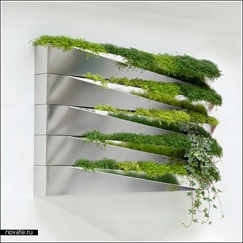 «Травяное зеркало»