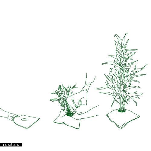 Подушка-горшок для комнатных растений