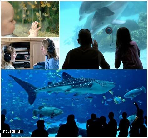 Акустическая система для аквариумов