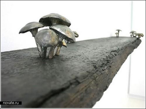 Полка, помогающая спасти грибы от исчезновения