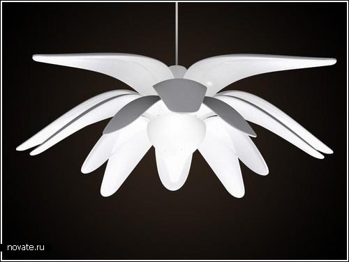 Ночник-цветок