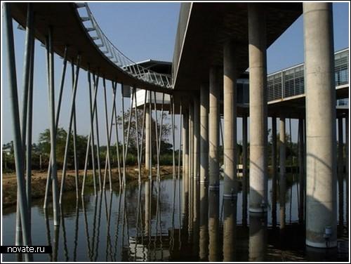 Кафе «Octospider» на мосту
