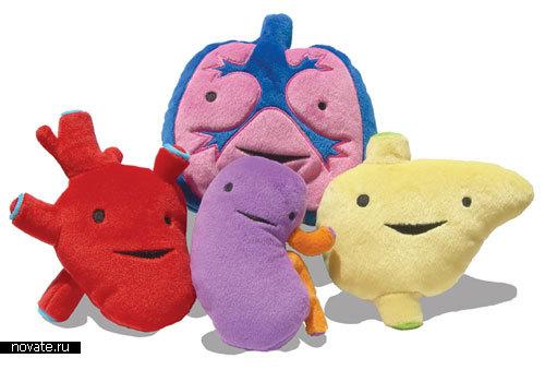 Плюшевые органы