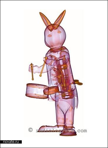 «Искусство радиологии»