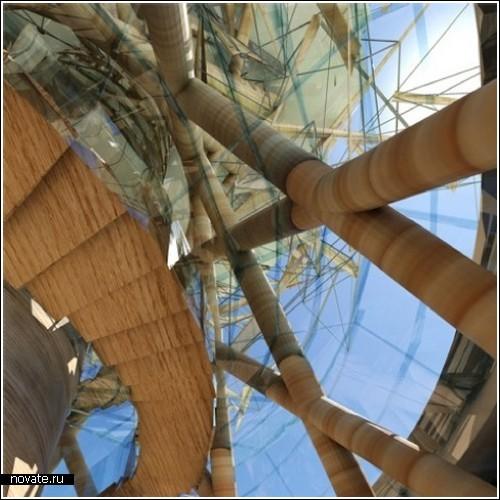 Дом-дерево в Шервудском лесу
