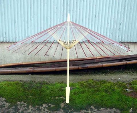 Прозрачный зонтик «Sinaru» от QURZ