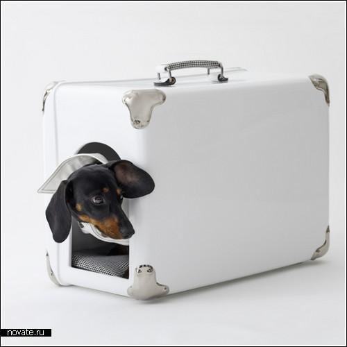 Правило больших сумок. Фото (с) www.novate.ru