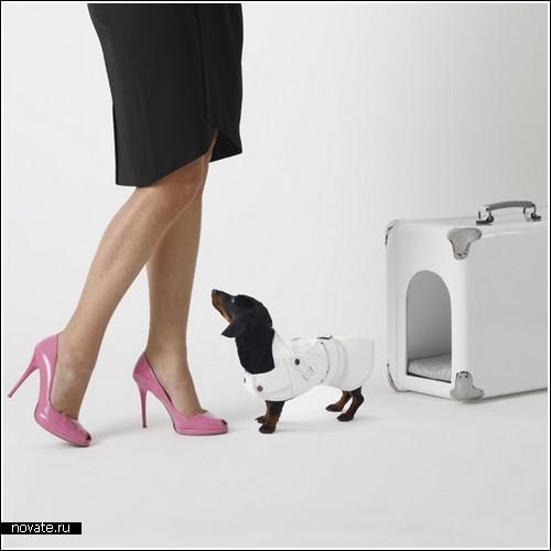 Чемоданчик для стильной дамочки…с собачкой
