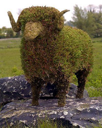 Зеленые скульптуры топиари.