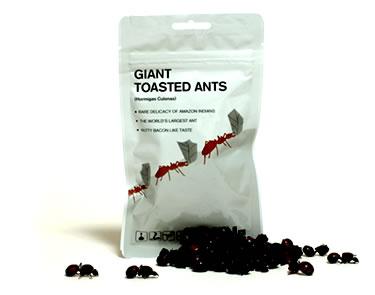 Гигантские жареные муравьи
