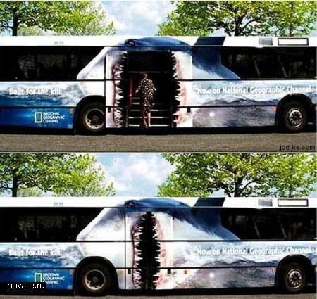 Реклама National Geographic на автобусе