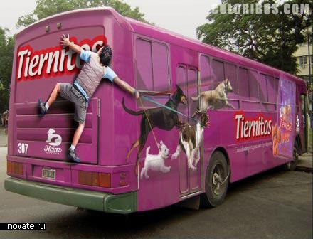 Реклама Tiernitos Dog Food на автобусе