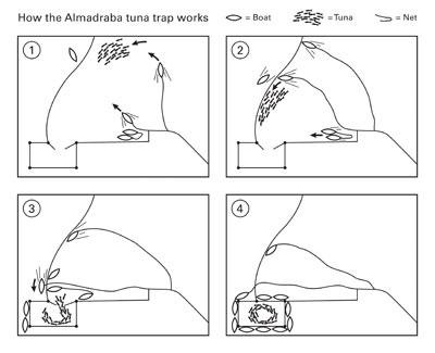 Схема действия рыбной ловушки