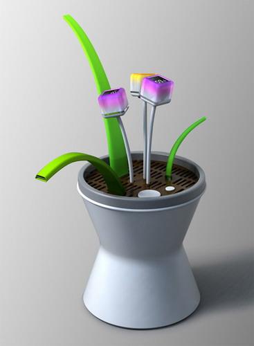 Электронные цветы подскажут температуру, влажность и уровень кислорода