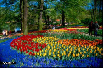 Keukenhof Gardens (Амстердам, Голландия)