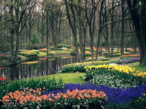 http://www.novate.ru/files/tim/gardens/garden8b.jpg