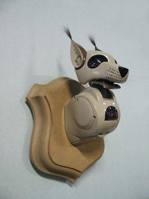 LYNX RUFUS(Bobcat) - Рысь
