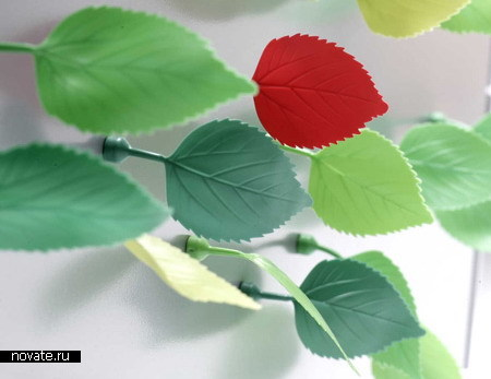 Магниты-листья