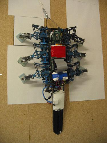 RiSE  робот-скалолаз