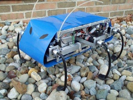 RHex  робот-таракан