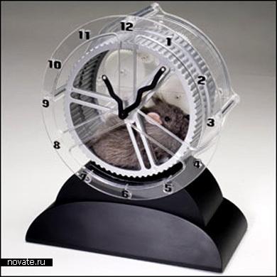 13 самых странных и необычных часов