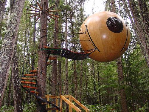 [عکس: treehouse1a.jpg]