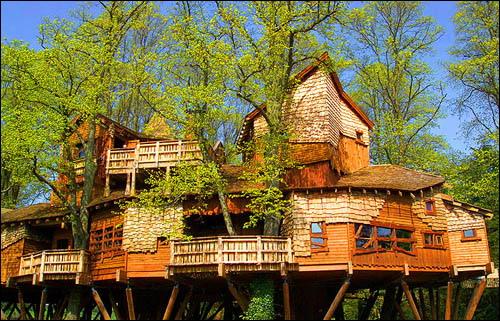 [عکس: treehouse2.jpg]